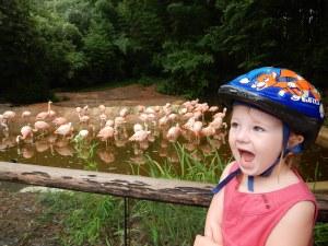 Wir waren im Zoo. Magali mit ihren Lieblingstieren.