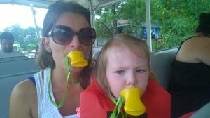 Ride the Ducks, Im Stone Mountainpark